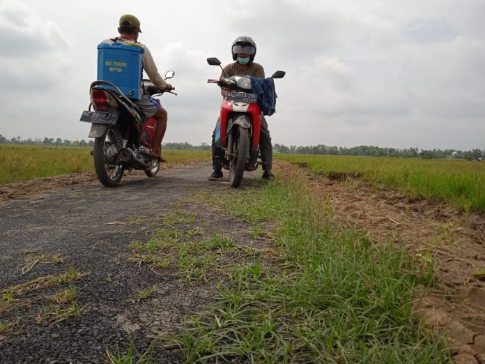 Terkait Jalan Lingkungan Kabid Bina Marga Terkesan Nyumput!!