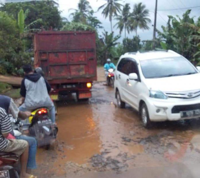 Warga Tanjung Harapan Lam-Tim Keluhkan Jalan Rusak