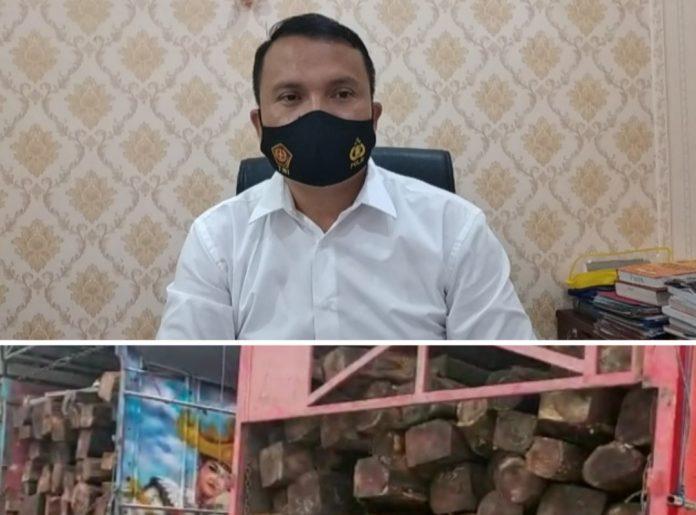 Polres Tanggamus Tangkap Perantara Order Pengangkutan Illeggal Logging Sonokeling