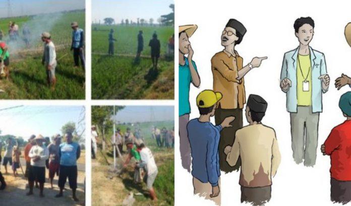 (gmbr ilusi) Gapoktan ) Karya Bersama Pekon Tanjung Anom Kecamatan Kota Agung Timur dipertanyakan